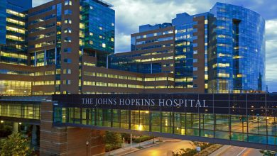 Photo of Junk Science? Number 81: Johns Hopkins: cancer is primarily 'bad luck'